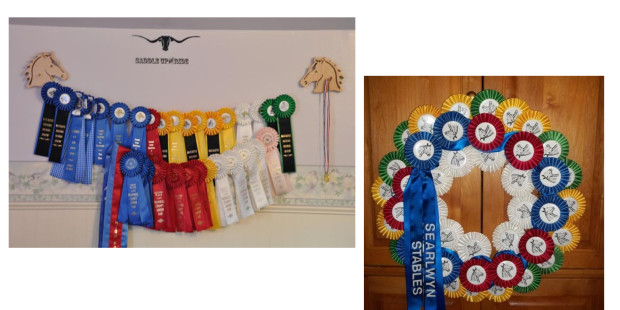 Horse Show Ribbon Display Ideas