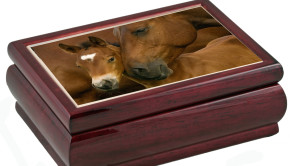 musical horse jewelry box