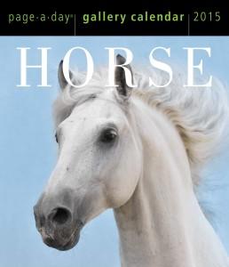 Horse 2015 Gallery Calendar, Horse Calendars