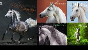 Horses Calendar 05