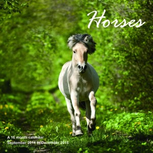 Horses Calendars - 2015 Wall calendars - Animal Calendar - Monthly Wall Calendar by Magnum