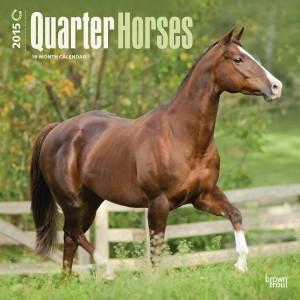 Quarter Horses 2015 Calendar, Horse Calendars