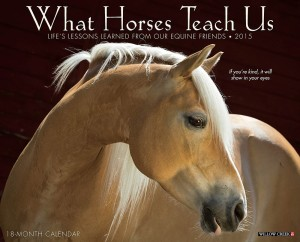 What Horses Teach Us 2015 Wall Calendar, Horse Calendars