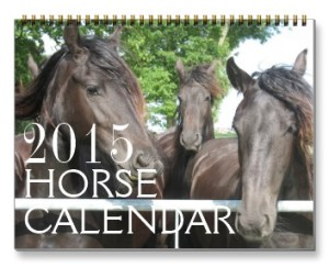 2015 Horse Calendar