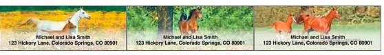 Horses at Play Address Labels, Checks for Horse Lovers