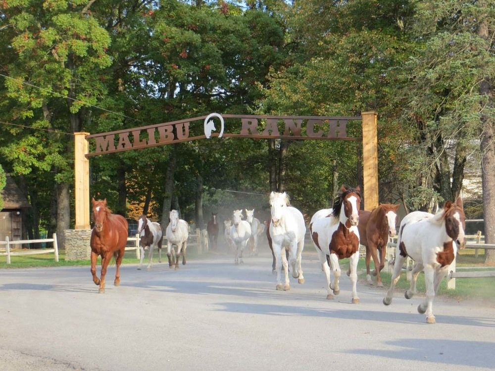 The Malibu Dude Ranch Vacation Getaway