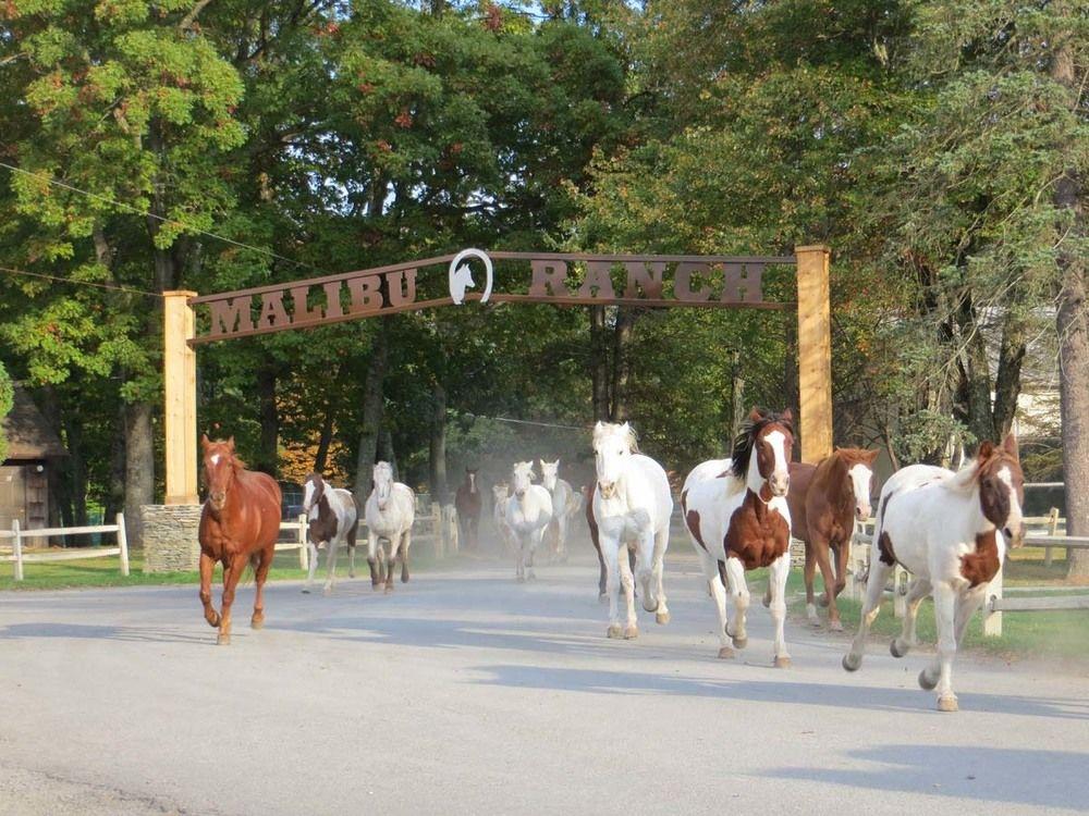 The Malibu Dude Ranch Vacation Getaway