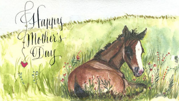 Mother's Day Horse Card