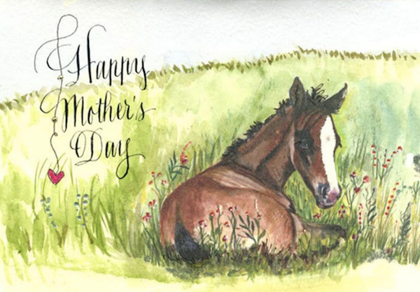 Mothers Day Horse Card
